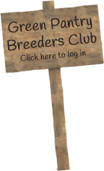 Green Dog Breeders Club