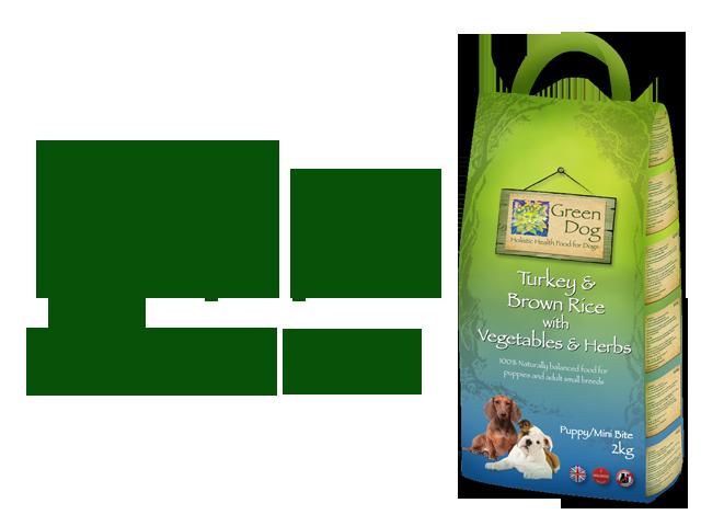 Green Dog Puppy-Mini Adult