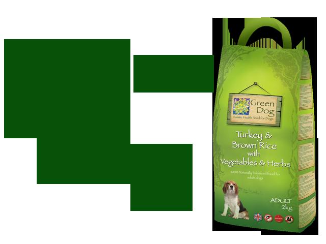 Green Dog Adult